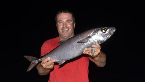 Butterfish on baiting - www.rodfishingclub.com - Rodrigues - Mauritius - Indian Ocean
