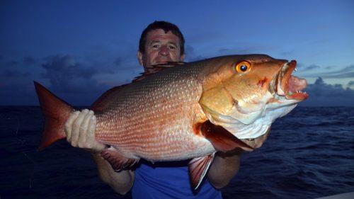 Carpe rouge en pêche a l'appât par JJ - www.rodfishingclub.com - Rodrigues - Maurice - Océan Indien