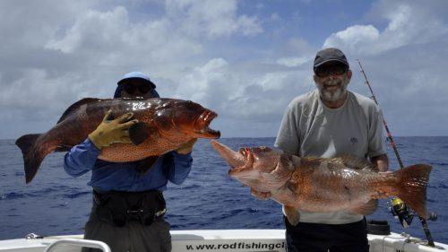 Mérou babones en pêche a l'appât - www.rodfishingclub.com - Rodrigues - Maurice - Océan Indien