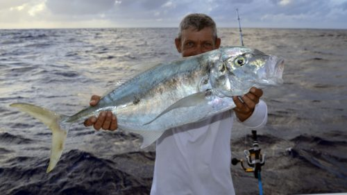 Spotted trevally on jigging by Denis - www.rodfishingclub.com - Rodrigues - Mauritius - Indian Ocean