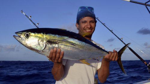 ellowfin tuna on trolling by Christophe - www.rodfishingclub.com - Rodrigues - Mauritius - Indian Ocean