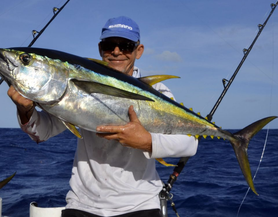 Yellowfin tuna on trolling by Denis - www.rodfishingclub.com - Rodrigues - Mauritius - Indian Ocean