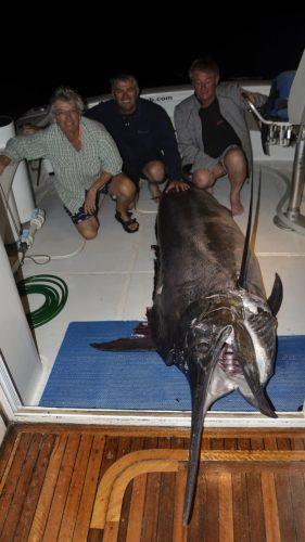 Marlin noir 270kg en peche a la traine - www.rodfishingclub.com - Rodrigues - Maurice - Ocean Indien