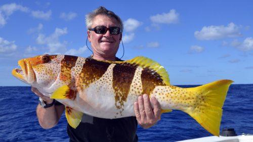 Merou babone ananas en peche au jig - www.rodfishingclub.com - Rodrigues - Maurice - Ocean Indien