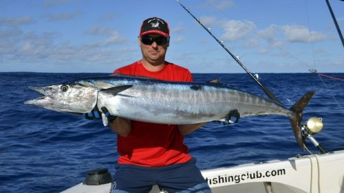 Nice wahoo on trolling - www.rodfishingclub.com - Rodrigues - Mauritius - Indian Ocean