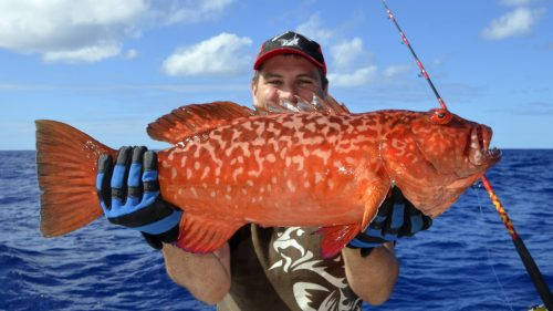 Red corail trout on jigging - www.rodfishingclub.com - Rodrigues - Mauritius - Indian Ocean