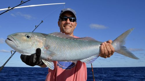 Jobfish on jigging by Gilles
