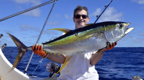 Magnifique thon jaune en peche a la traine