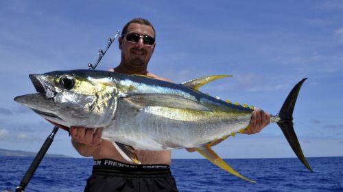 eau thon jaune en peche a la traine - www.rodfishingclub.com - Rodrigues - Maurice - Ocean Indien