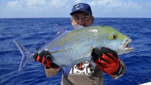 Carangue bleue en peche au jig par Marc - www.rodfishingclub.com - Rodrigues - Maurice - Ocean Indien