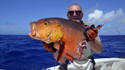 Carpe rouge en peche a l appat coupé par un requin - www.rodfishingclub.com - Rodrigues - Maurice - Ocean Indien