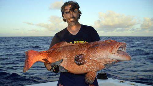 Mérou babon en peche au jig par Bruno - www.rodfishingclub.com - Rodrigues - Maurice - Océan Indien