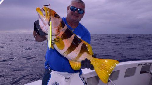 Mérou babone ananas (plectopromus laevi) en peche au jig - www.rodfishingclub.com - Rodrigues - Maurice - Océan Indien