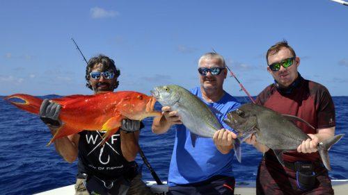 Multifishing on jigging - www.rodfishingclub.com - Rodrigues - Mauritius - Indian Ocean