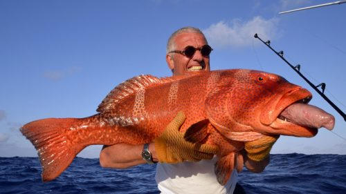 Red corail trout on baiting by Mathias - www.rodfishingclub.com - Rodrigues - Mauritius - Indian Ocean