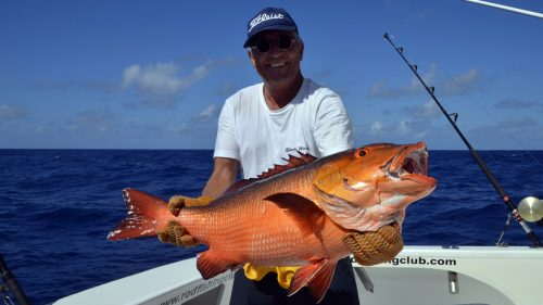 Red snapper on baiting by Mathias - www.rodfishingclub.com - Rodrigues - Mauritius - Indian Ocean