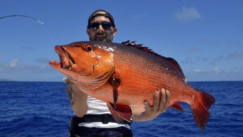 Red snapper on jigging - www.rodfishingclub.com - Rodrigues - Mauritius - Indian Ocean