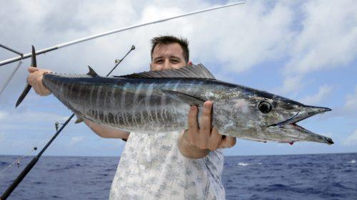 Wahoo en peche a la traine - www.rodfishingclub.com - Rodrigues - Maurice - Ocean Indien