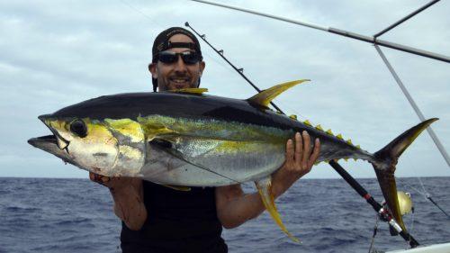 Yellowfin tuna on trolling - www.rodfishingclub.com - Rodrigues - Mauritius - Indian Ocean