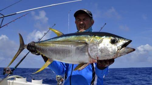 Thon jaune en peche a la traine par Philippe - www.rodfishingclub.com - Rodrigues - Maurice - Ocean Indien