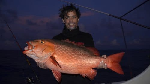 Red snapper on baiting by Cyril - www.rodfishingclub.com - Rodrigues - Mauritius - Indian Ocean