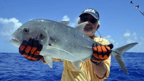 GT on baiting - www.rodfishingclub.com - Rodrigues - Mauritius - Indian Ocean