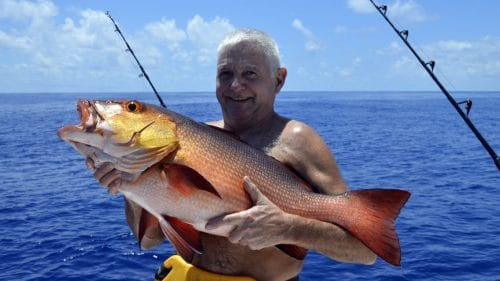 Red snapper on baiting by Alain - www.rodfishingclub.com - Rodrigues - Mauritius - Indian Ocean