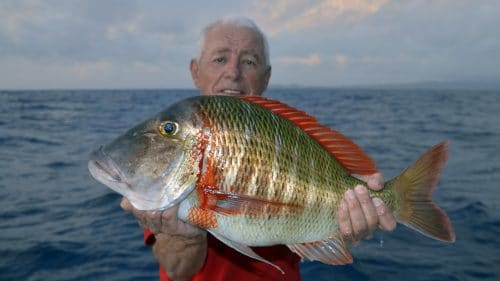 Sky emperor on baiting by Mitch - www.rodfishingclub.com - Rodrigues - Mauritius - Indian Ocean