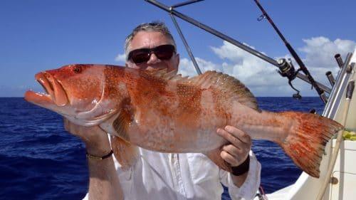 Mérou babone en peche a l appat par Patrice - www.rodfishingclub.com - Rodrigues - Maurice - Océan Indien