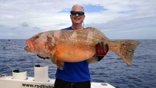 Red corail trout on baiting by Paul - www.rodfishingclub.com - Rodrigues - Mauritius - Indian Ocean