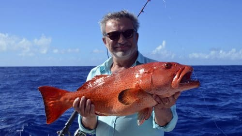Red corail trout on baiting - www.rodfishingclub.com - Rodrigues - Mauritius - Indian Ocean