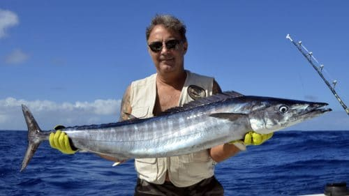 Wahoo on trolling by Pat - www.rodfishingclub.com - Rodrigues - Mauritius - Indian Ocean