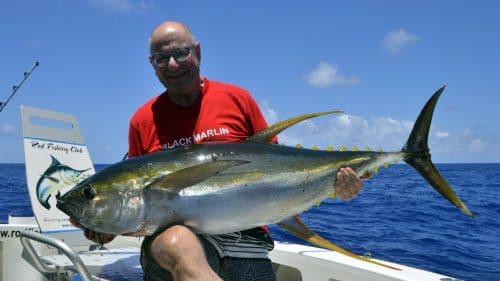 36kg yellowfin tuna on trolling by Paul - www.rodfishingclub.com - Rodrigues - Mauritius - Indian Ocean