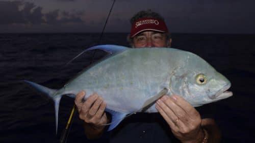 Carangue points jaunes en slow jigging par Marc - www.rodfishingclub.com - Rodrigues - Maurice - Océan Indien
