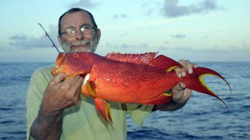 Croissant queue jaune en jigging - www.rodfishingclub.com - Rodrigues - Maurice - Ocean Indien