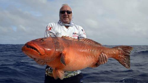 Gros mérou babone en peche au jig par Marc - www.rodfishingclub.com - Rodrigues - Maurice - Océan Indien