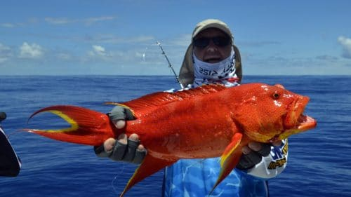 Moontail sea bass on jigging by Marc - www.rodfishingclub.com - Rodrigues - Mauritius - Indian Ocean