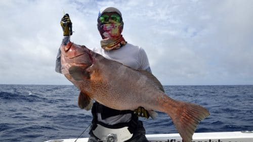 Nice red corail trout on jigging - www.rodfishingclub.com - Rodrigues - Mauritius - Indian Ocean