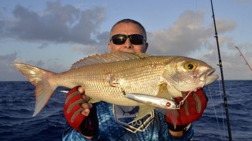 Snapper on slow jigging by Chetib - www.rodfishingclub.com - Rodrigues - Mauritius - Indian Ocean