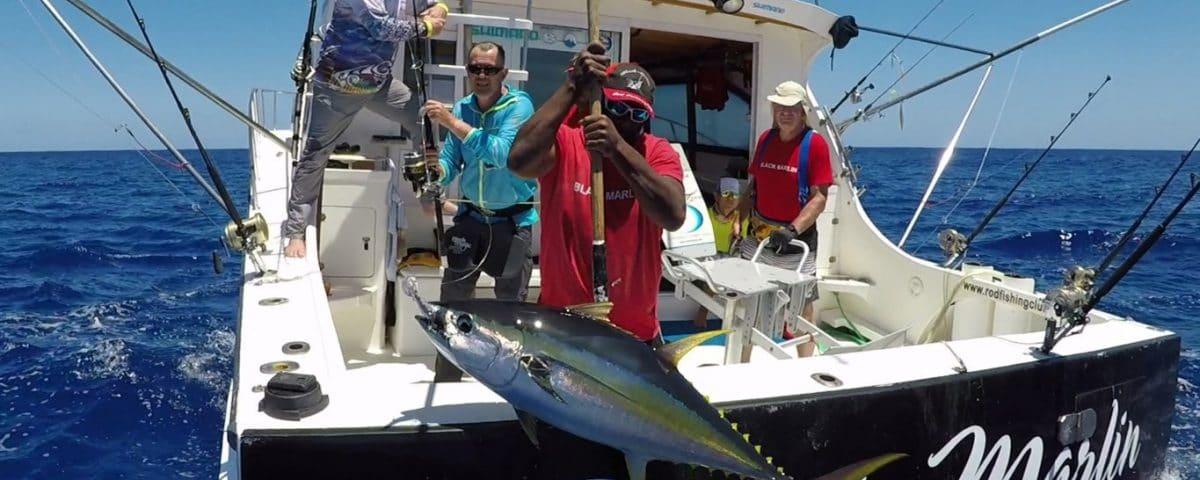 Thon jaune en peche en heavy spinning - www.rodfishingclub.com - Rodrigues - Maurice - Océan Indien
