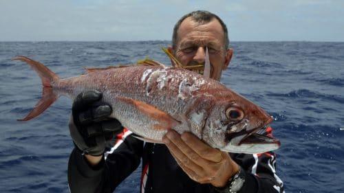 ivaneau en peche au jig - www.rodfishingclub.com - Rodrigues - Maurice - Océan Indien