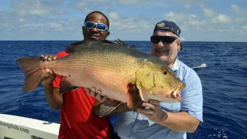 Big red snapper on baiting - www.rodfishingclub.com - Rodrigues - Mauritius - Indian Ocean