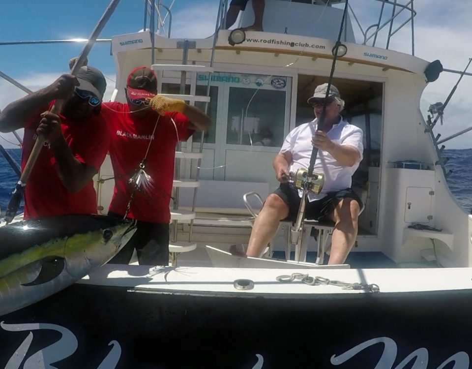Big yellowfin tuna on trolling - www.rodfishingclub.com - Rodrigues - Mauritius - Indian Ocean