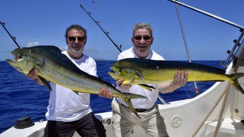 Dorados caught on trolling - www.rodfishingclub.com - Rodrigues - Mauritius - Indian Ocean