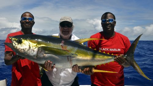 Gros thon jaune en peche a la traine - www.rodfishingclub.com - Rodrigues - Maurice -Ocean Indien