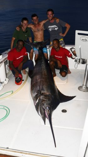 Marlin bleu mort au bateau - www.rodfishingclub.com - Rodrigues - Maurice - Ocean Indien