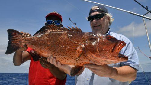 Merou babone en peche a l appat - www.rodfishingclub.com - Rodrigues - Maurice -Ocean Indien