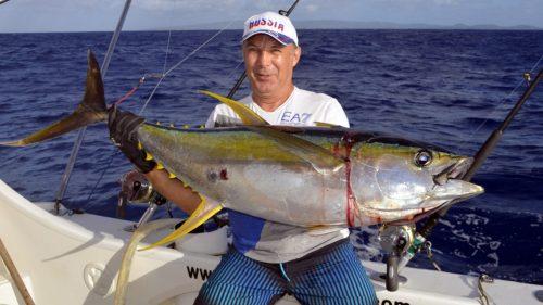 Thon jaune en peche a la traine - www.rodfishingclub.com - Rodrigues - Maurice - Océan Indien